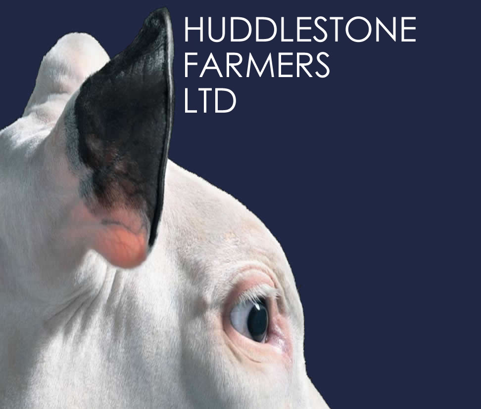Huddlestone Farmers Ltd